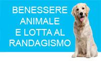 BENESERE ANIMALE E LOTTA AL RANDAGISMO